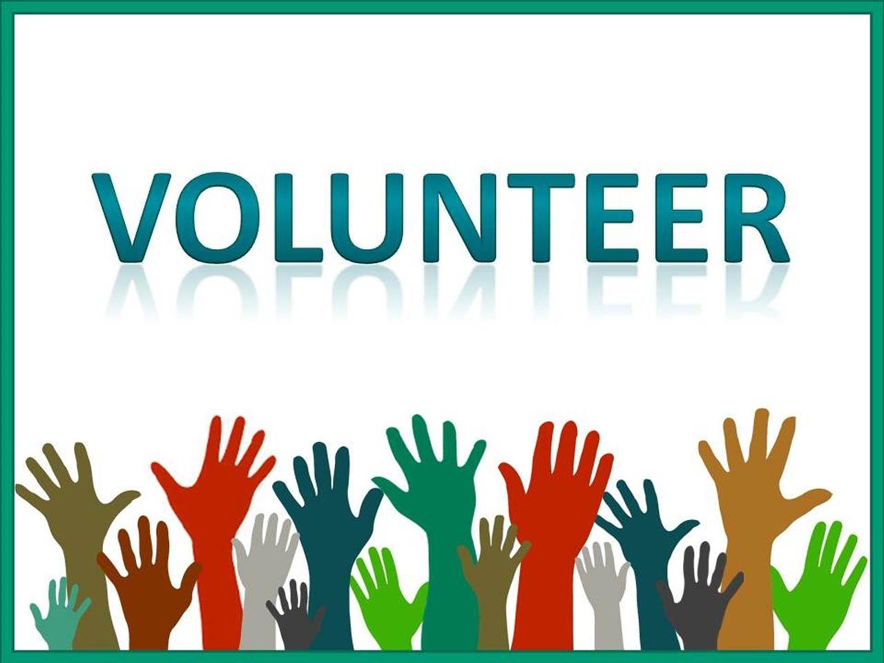 """""""Volunteer"""" graphic"""